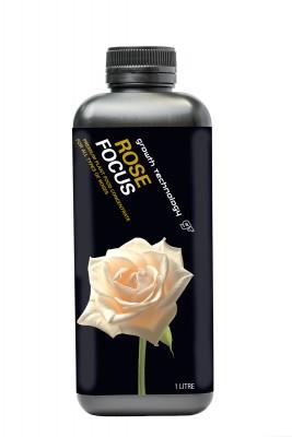 1L-ROSE-FOCUS